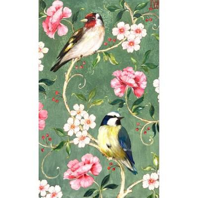 Sa210 - Les Oiseaux